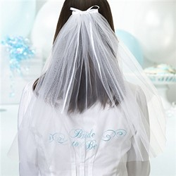 Embroidered Bride to be Veil