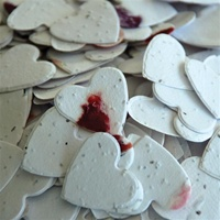 Petalled Heart Shaped Plantable Confetti