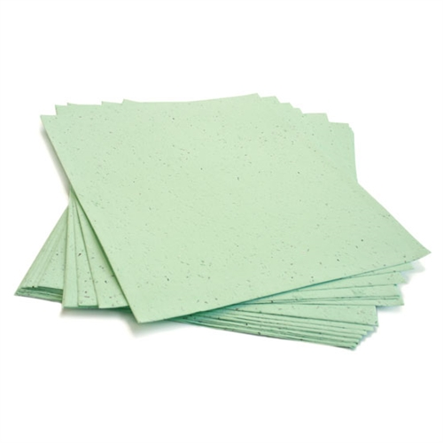 8 5 X 11 Seed Paper Wildflower Pkg Of 10 Sheets ON SALE At The