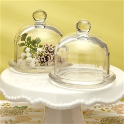 Small Glass Bell Jars