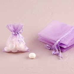 Small Sheer Rectangular Organza Bags (10)